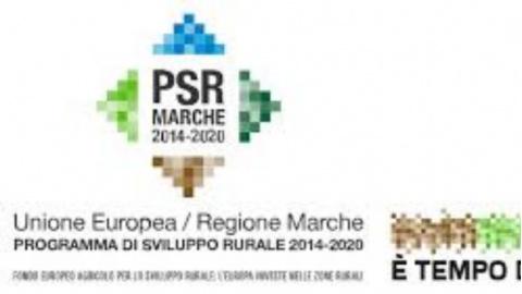 Risorgimarche 2020 Calendario.Notizie Del 1 Luglio 2019 Vivere Ascoli Notizie Per La